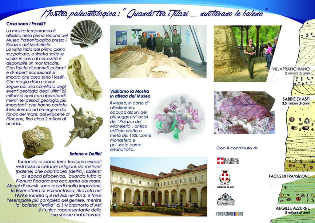 museo fossili